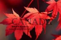 加拿大夫妻团聚面试主要是什么